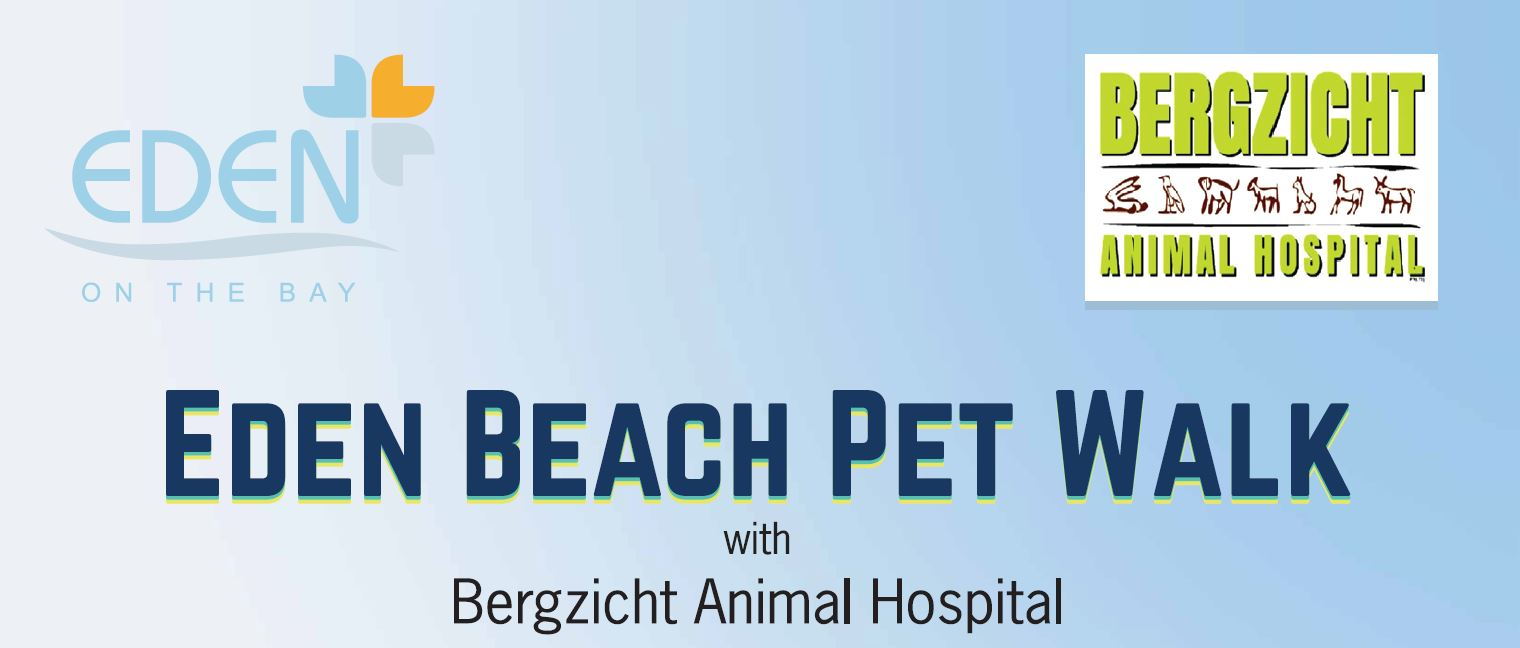 beach pet walk